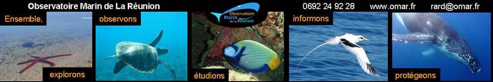 Observatoire Marin de La Réunion